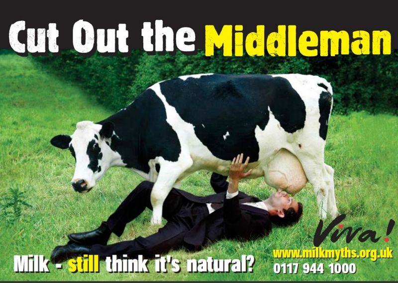 Dairy-1024x730