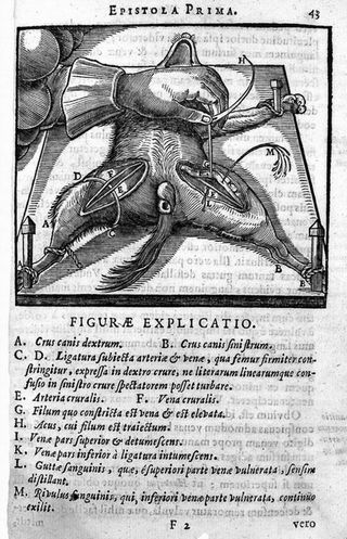 Bad-Medicine-Doctors-Doing-Harm-since-Hippocrates_page122_image1