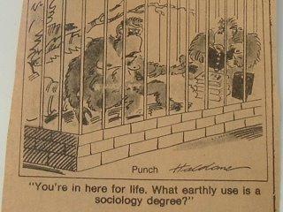 Sociology cartoon