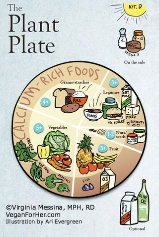 Plant-Plate-Infographic