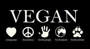 Vegan warrior