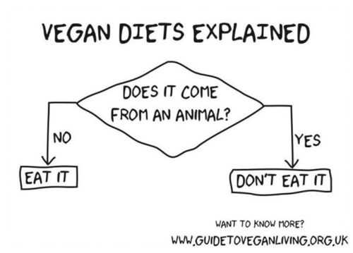 Veganism explained