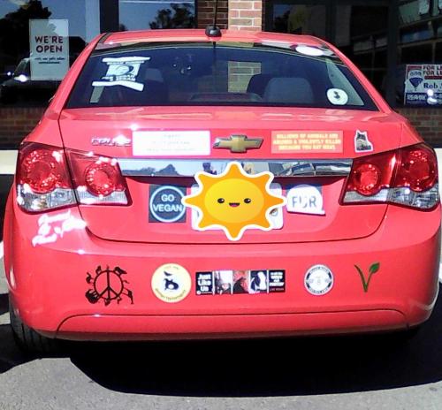 Vegan sun car (2)